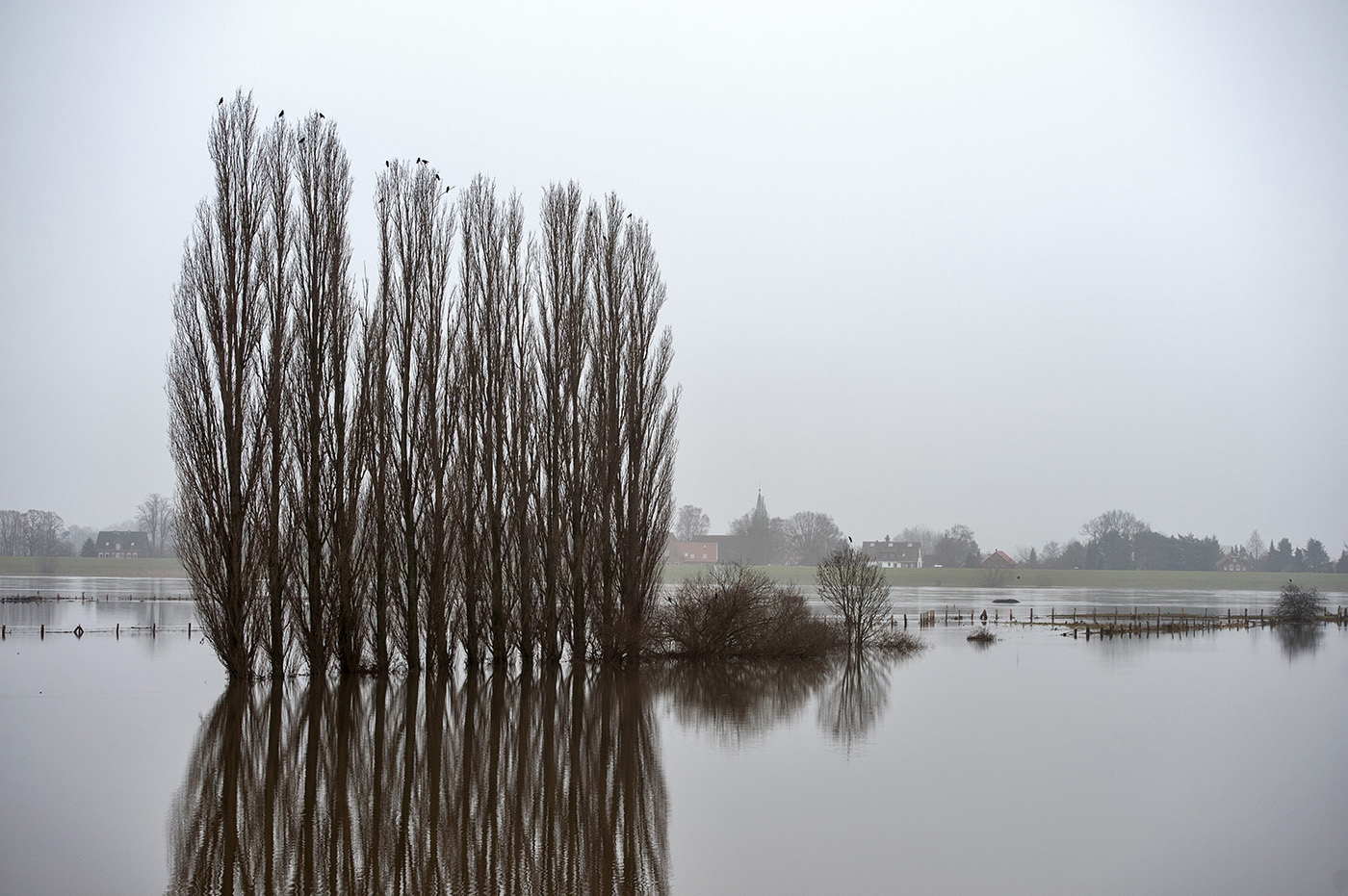 Flut, bei Zollenspieker Fährhaus