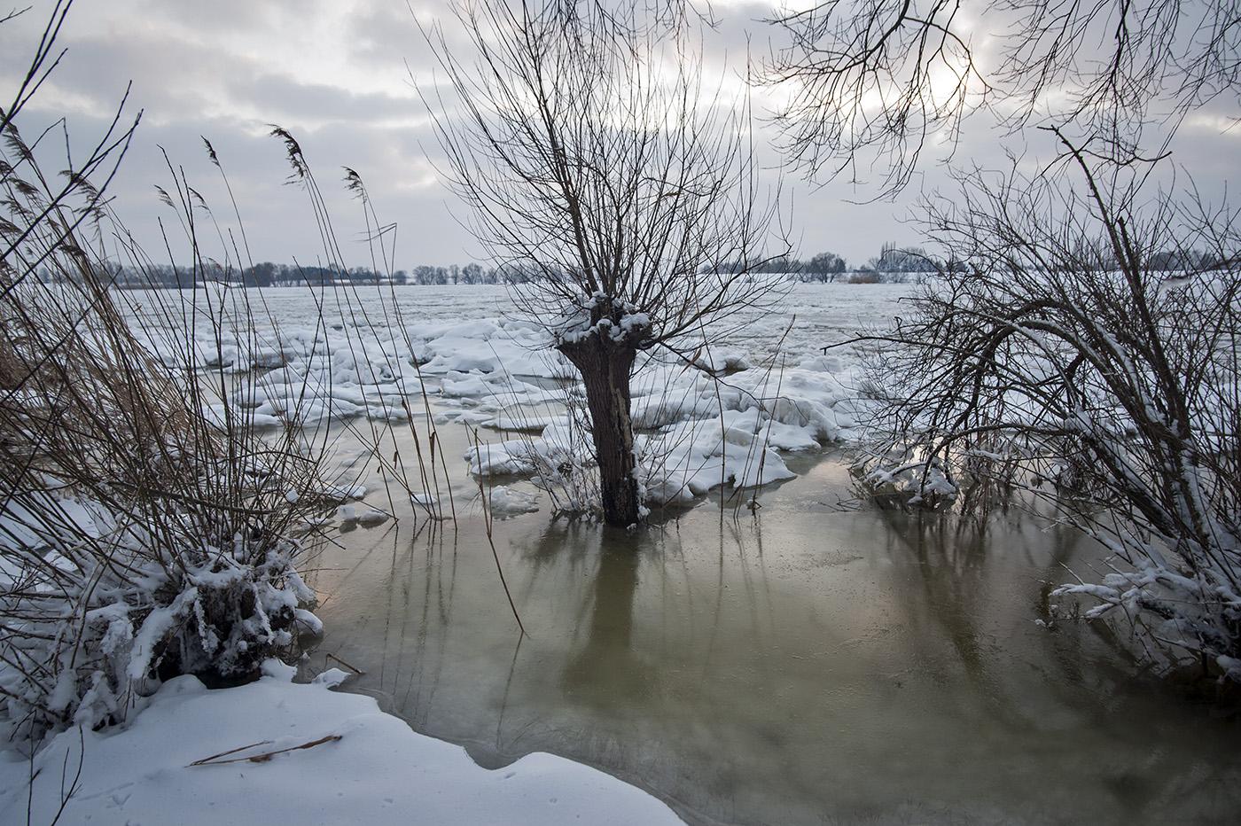 Overwerder, die Elbe im Winter