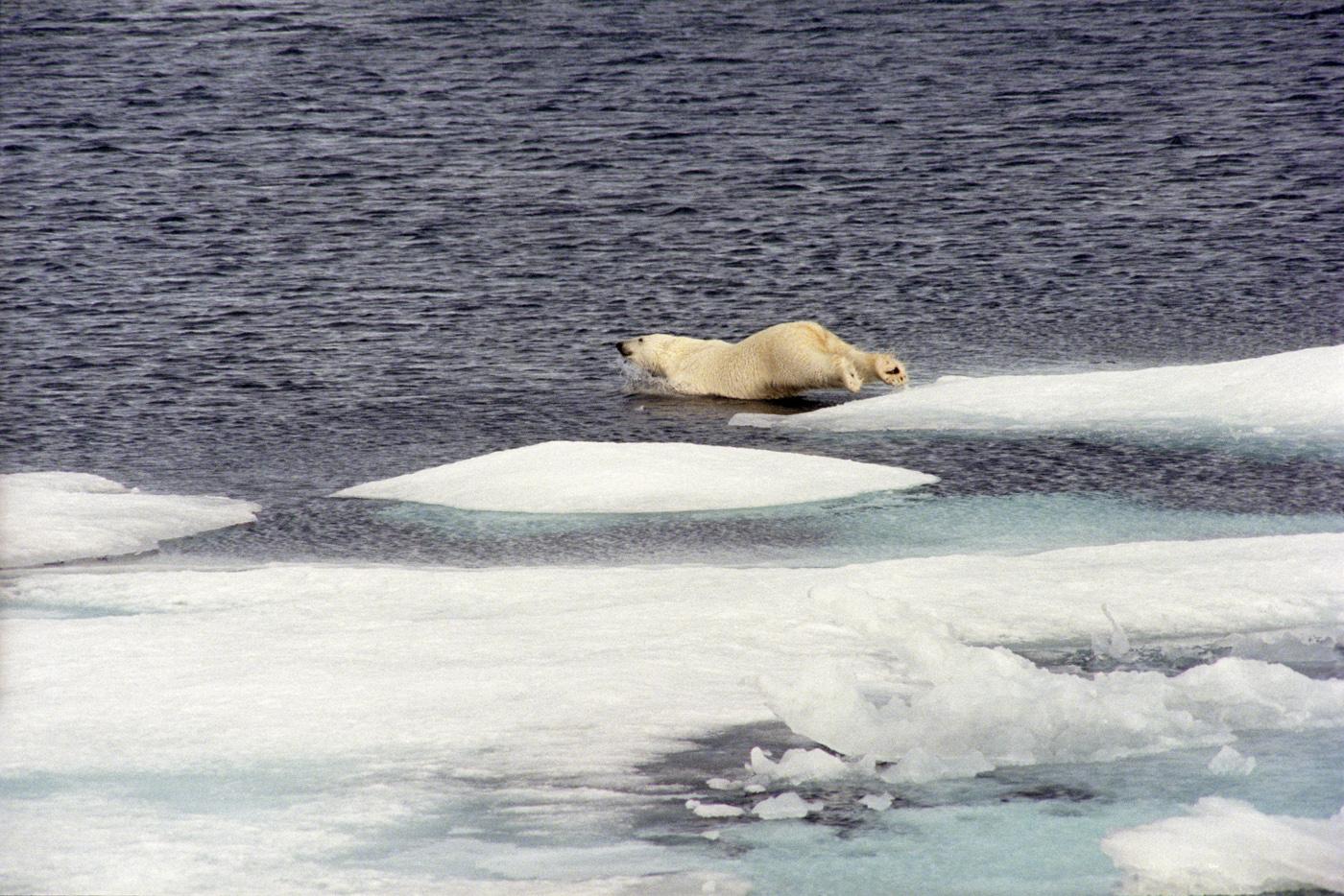 Nordwest-Passage vor Alaska